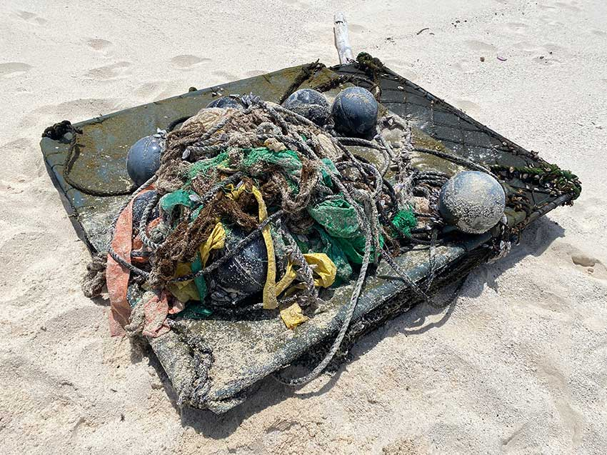 The FAD was collected and brought to shore by the wardens